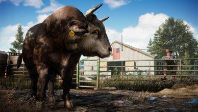 Far Cry 5 presentacion