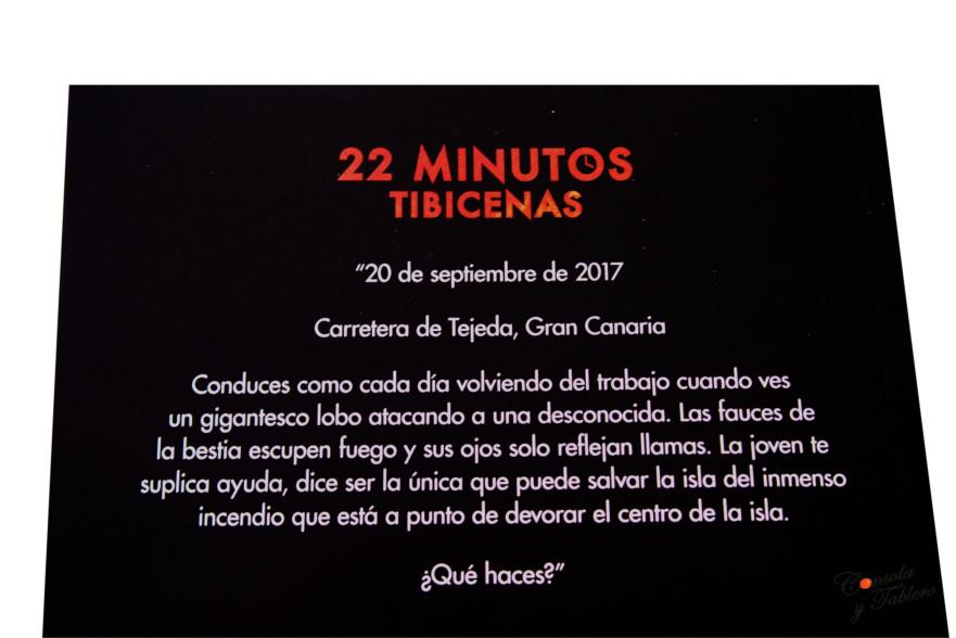 22 Minutos Tibicenas