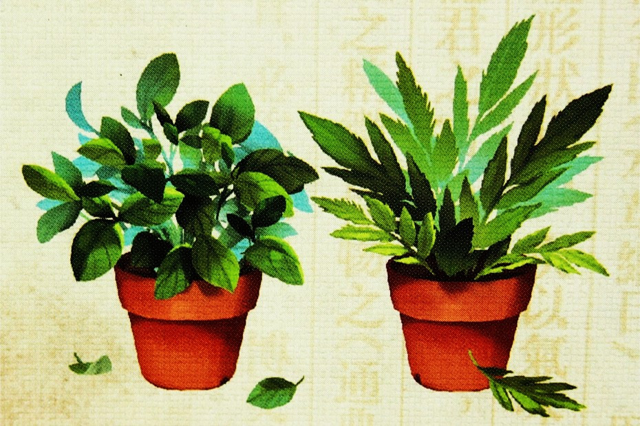 Herbalism juego