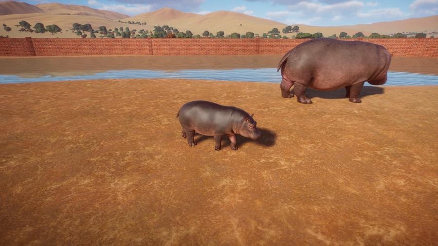 Planet Zoo Hipopotamos